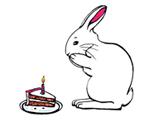 birthdaybunnythumbnail